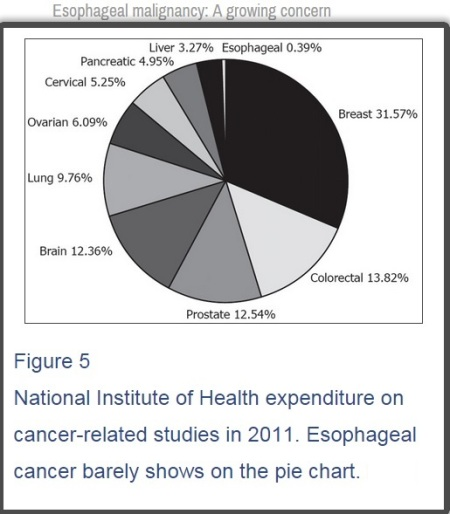 NIH Funding of esophageal cancer research